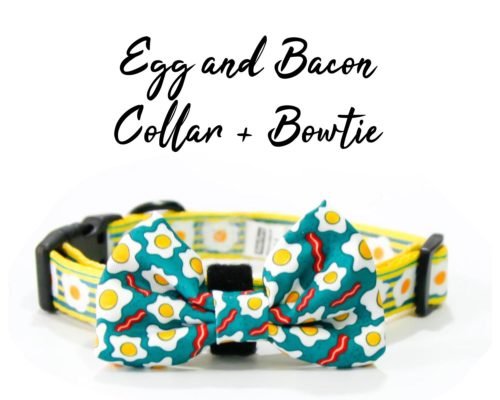 Egg and Bacon collar and bow