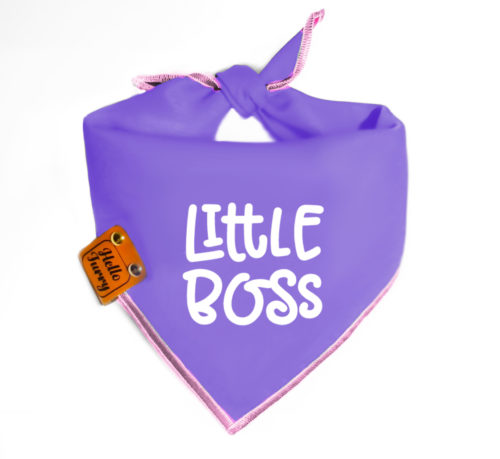 S5 – Purple Little Boss