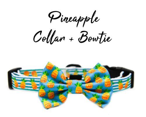 @Pineapple Bowtie